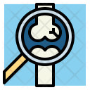 Bone x-ray Icon