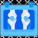 Bone Xray Xray Skeleton Icon
