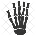 Bones Hand Osteology Icon