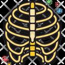 Mbones Bones Rib Icon