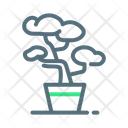 Bonsai Plant Tree Icon