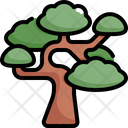 Bonsai Tree Nature Icon