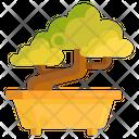 Bonsai Cultivation Japanese Icon