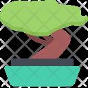 Bonsai Country Culture Icon