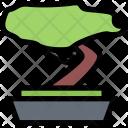 Bonsai Culture Civilization Icon