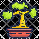 Bonsai Plant Bonsai Botanical Icon