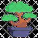 Potted Plant Japanese Plant Bonsai Plant Icon