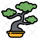Bonsai Plant Nature Icon
