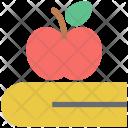 Book Apple Diet Icon