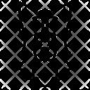 Border Collie Dog Puppy Icon