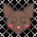 Border Collie Dog Smiling Icon