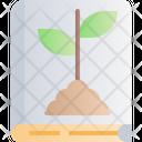 Botanical Nature Tree Icon