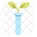 Botany Test Biological Experiment Icon