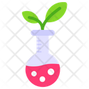 Plant Plant Growth Botanical Research Icon