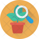Botany Experiment Magnifying Icon