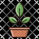 Botany Science Plant Icon