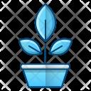 Botany Plant Science Icon