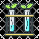 Botany Plant Nature Icon