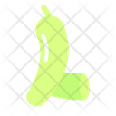 Bottle Gourd Vegetable Healthy Icon