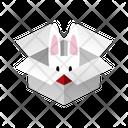 Box Rabbit Icon