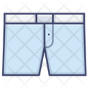 Trunk Underwear Underpants Icon
