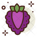 Boysenberry Raspberry Icon
