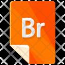 Br file Icon