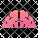 Brain Mind Thinking Icon