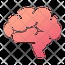 Brain Human Mind Mind Icon