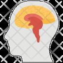 Human Brain Cerebrum Mind Icon