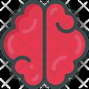 Brain Idea Mind Icon