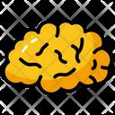 Mind Brain Pathology Icon
