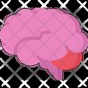 Brain Smart Health Care Icon