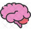 Brain Smart Health Care Icon