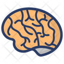 Brain Neural System Body Organ Icon