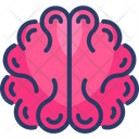Brain Brainstorming Education Icon