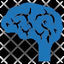 Brain Mind Neuroscience Icon