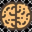 Brain Knowladge Idea Icon