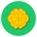 Brain Nervous System Cerebrum Icon