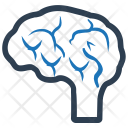 Brain Human Intelligence Icon