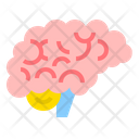 Neurology Medical Brain Icon