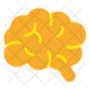 Brain Mind Intellect Icon