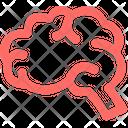 Brain Medical Hospital Icon