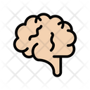 Brain Mind Healthcare Icon