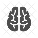 Brain Neurologist Nerve Icon