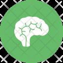 Brain Mind Human Icon