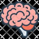 Brain Head Cerebrum Icon