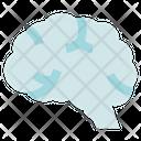Biology Brain Mind Icon