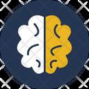 Brain Creative Logic Icon