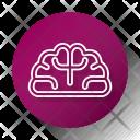 Brain Study School Icon